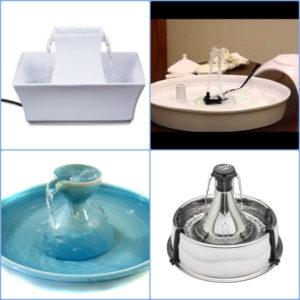 best cat fountains