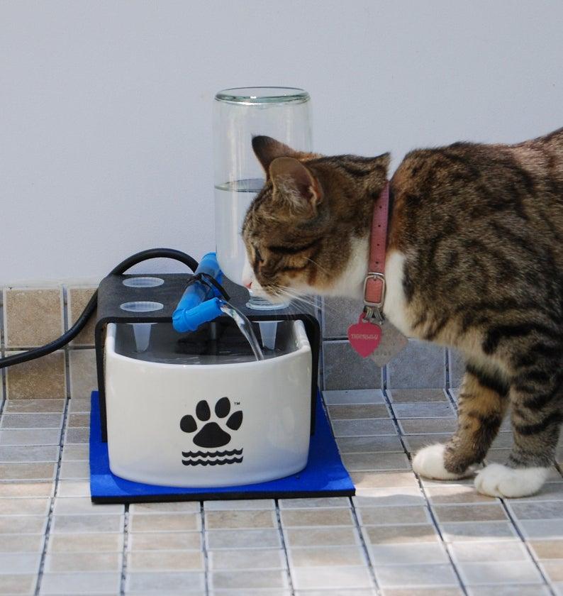 ceramic cat water fountain